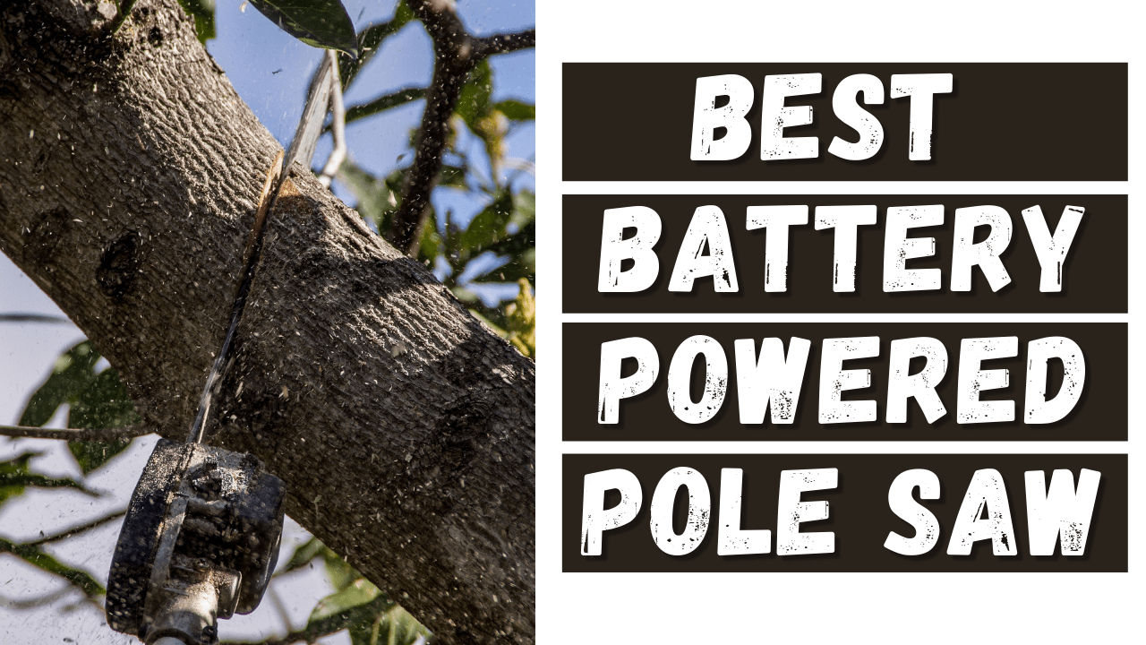 Best Battery Powered Pole Saw
