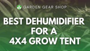 Best Dehumidifier for a 4×4 Grow Tent