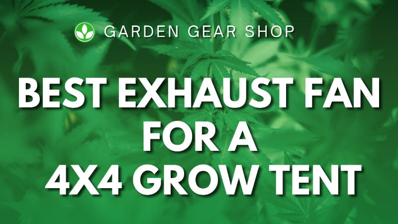 Best Exhaust Fan for a 4×4 Grow Tent