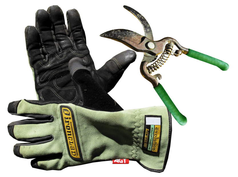 Best Garden Gloves for Thorns