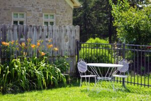Best Insect Repellent for Yard