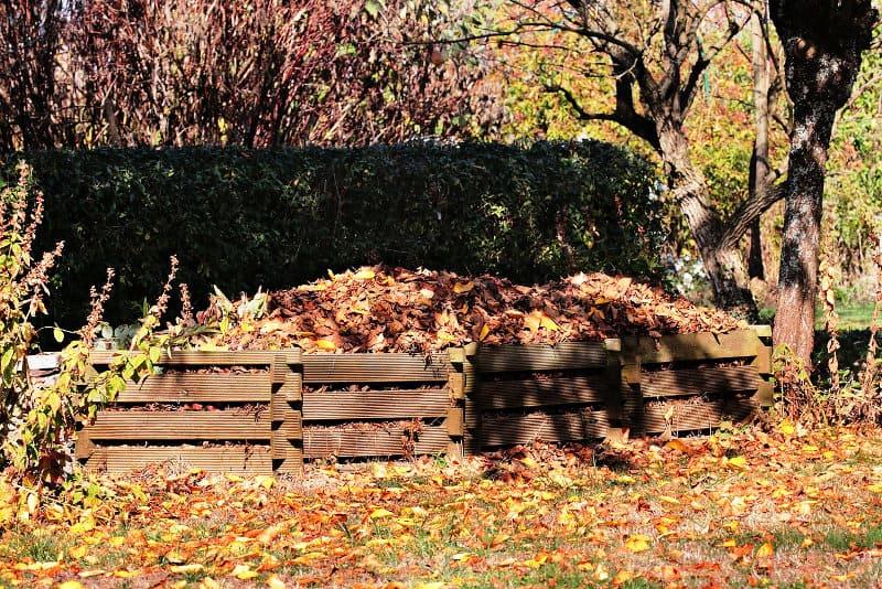 Best Leaf Shredder for Compost
