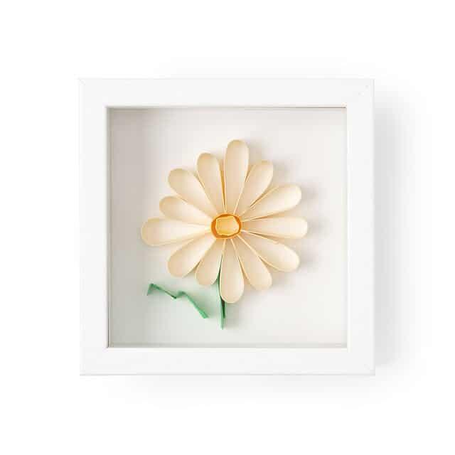 Daisy Birth Month Flower 3D Art