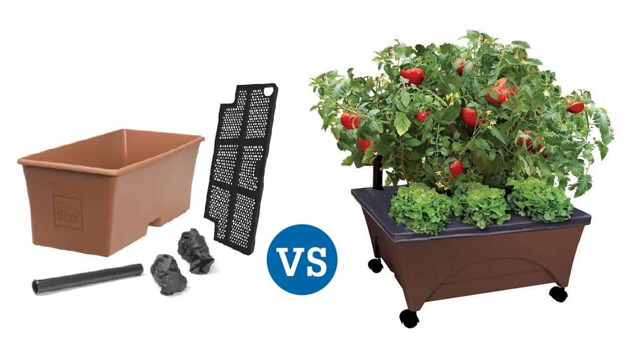 Earthbox vs City Pickers