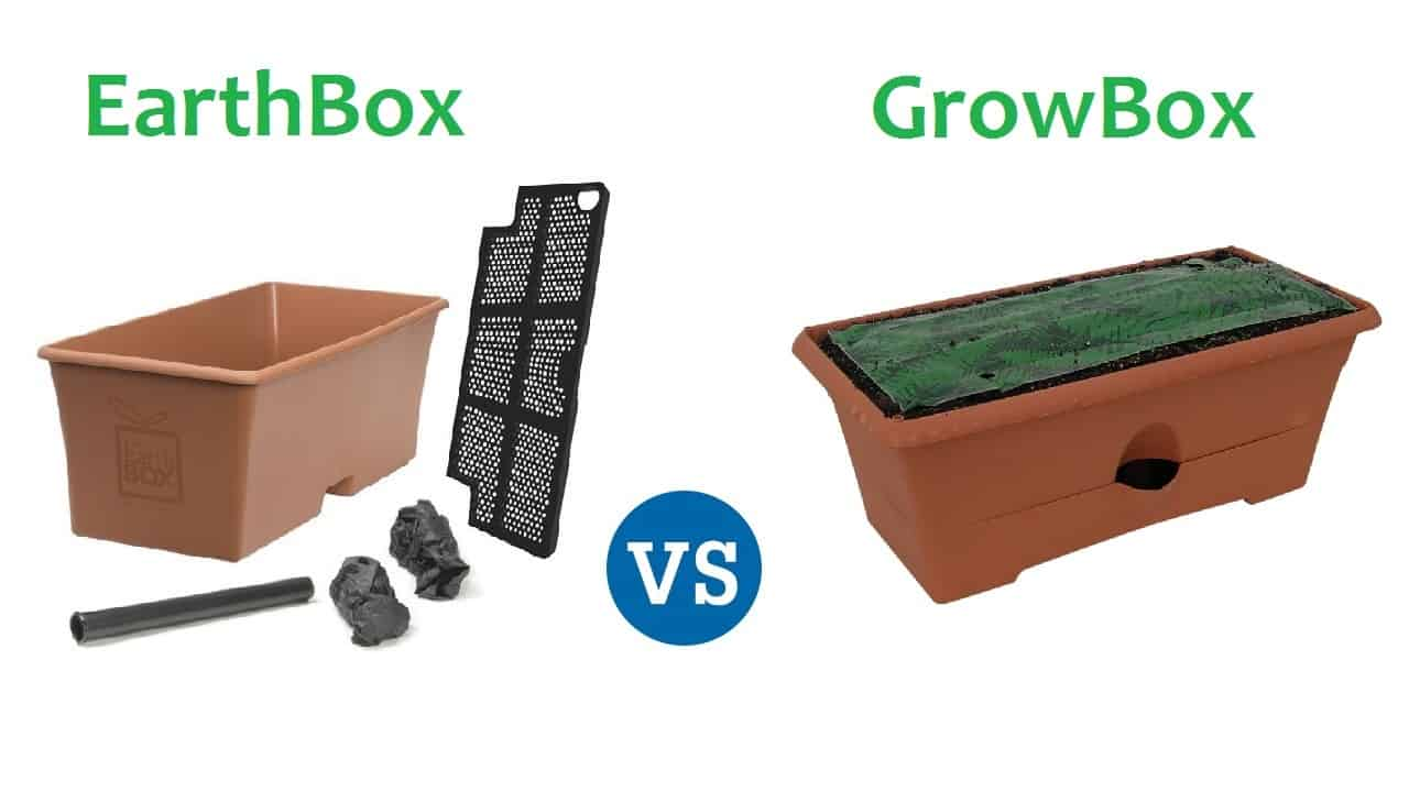 Earthbox vs Grow Box