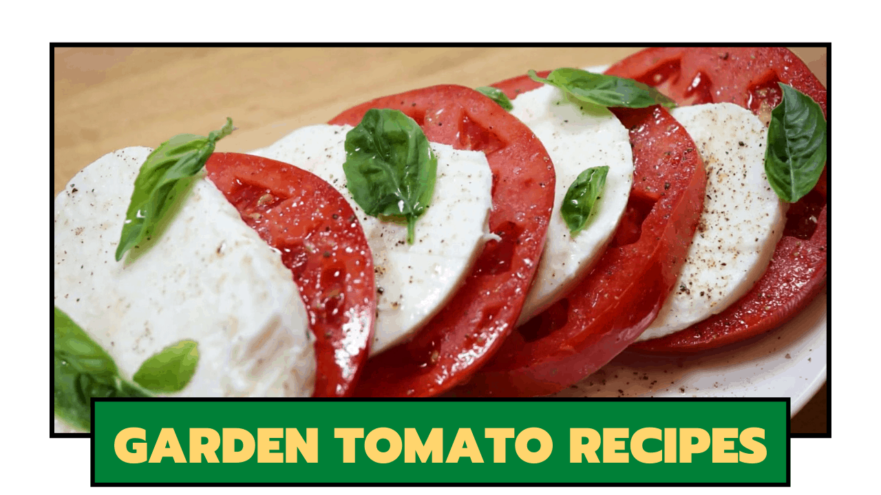 Garden Tomato Recipes