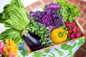 Gifts for Vegetable Gardeners