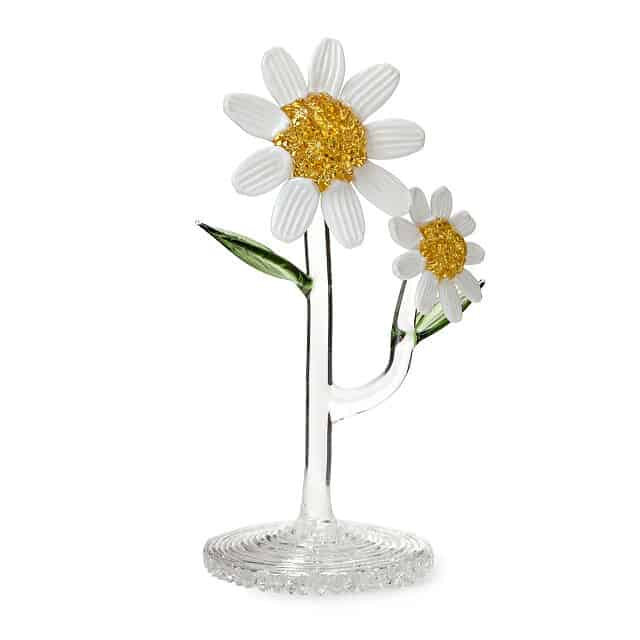 Glass Daisy April Birth Month Flower
