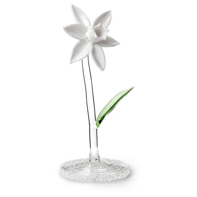 Glass Narcissus December Birth Month Flower