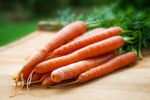 Growing Carrots at Home