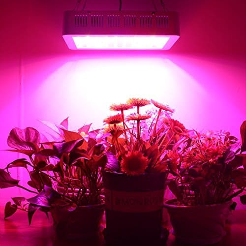 HIGROW 600W Double Chips LED Grow Light - Demo