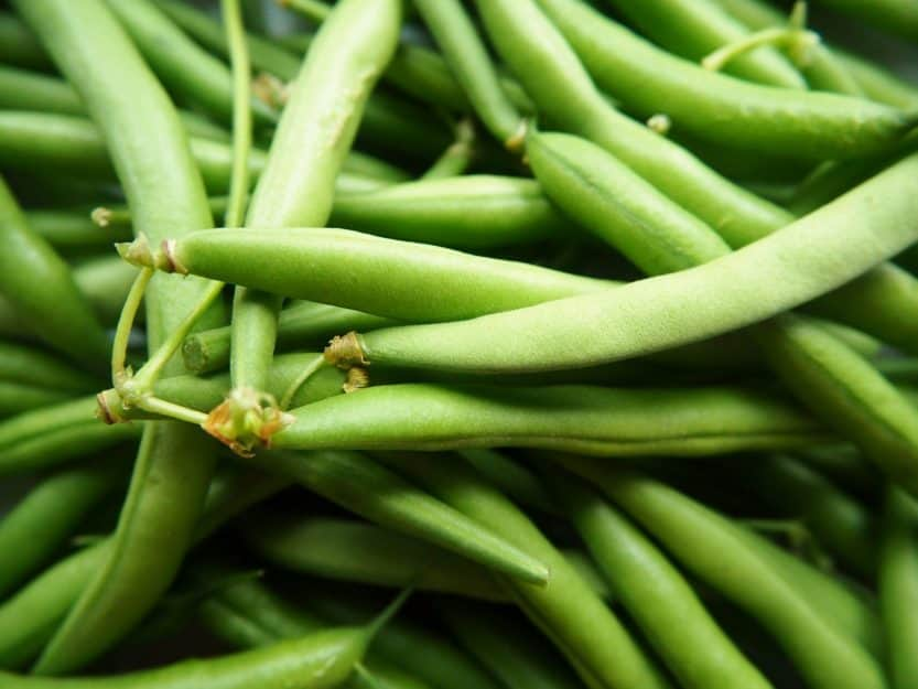How to Grow Beans at Home