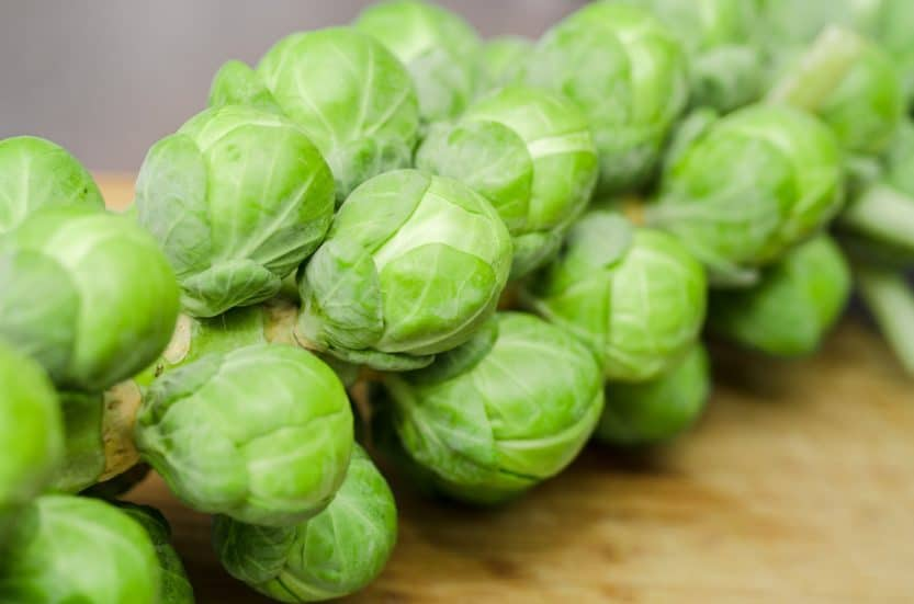 How to Grow Brussels Sprouts at Home