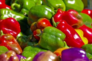 Hydroponic Bell Pepper Yield Per Plant