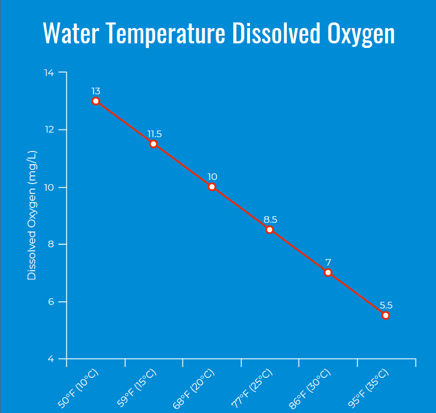 Hydroponic Water Temperature Dissolved Oxygen Content