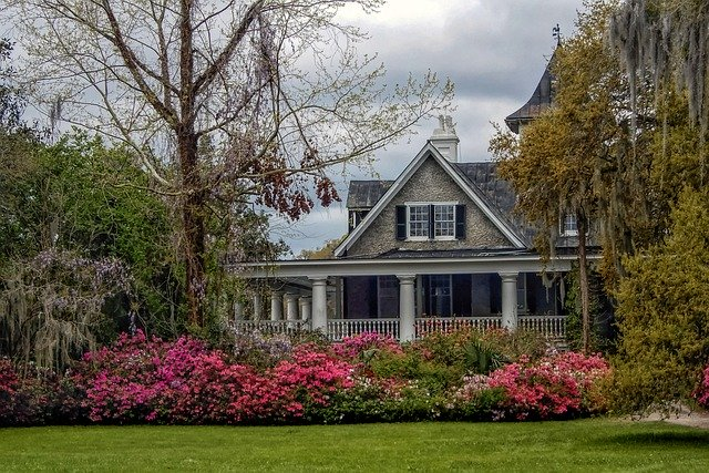 When To Fertilize Azaleas in Georgia